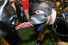 Articles : Fétichisme pour débutants : Les jeux puppy