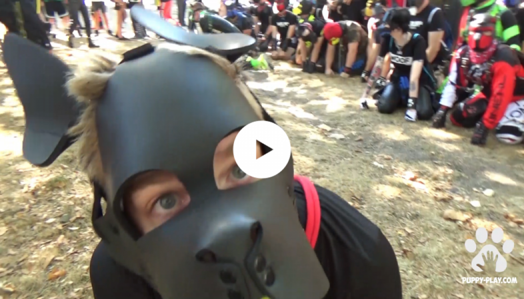 Vidéo : The Walking Dog – Folsom 2018