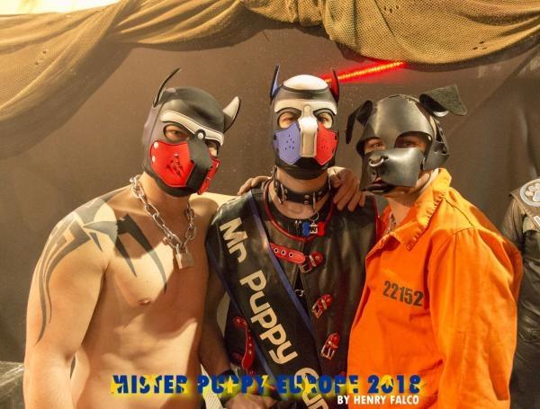 Interview : Matt Mister Puppy Europe 2018