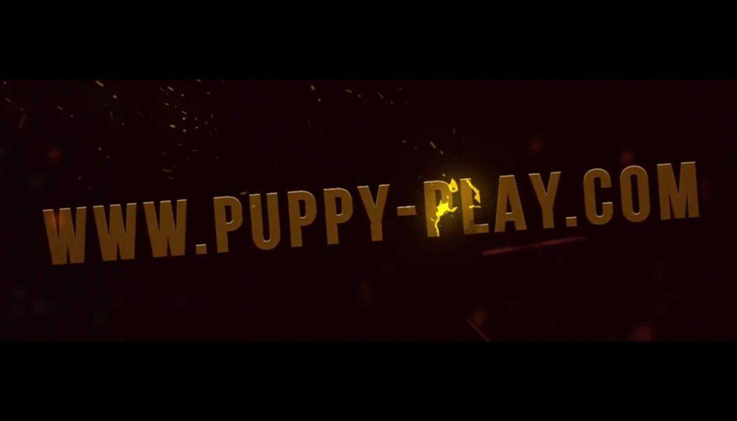 Vidéo : Puppy-play.com