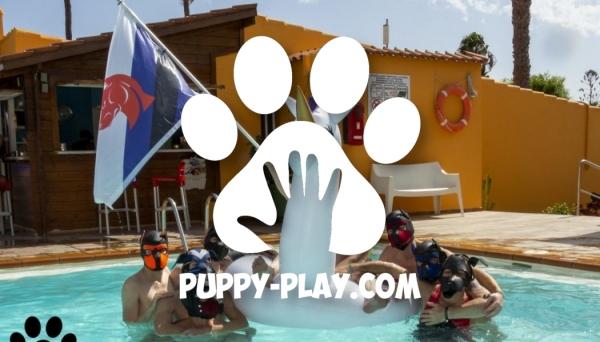 Photos : Puppy Pool Party – Tropical La Zona 2018
