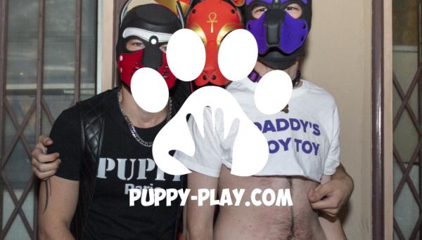 Photos : Apéro Pup' Attitude Octobre 2018