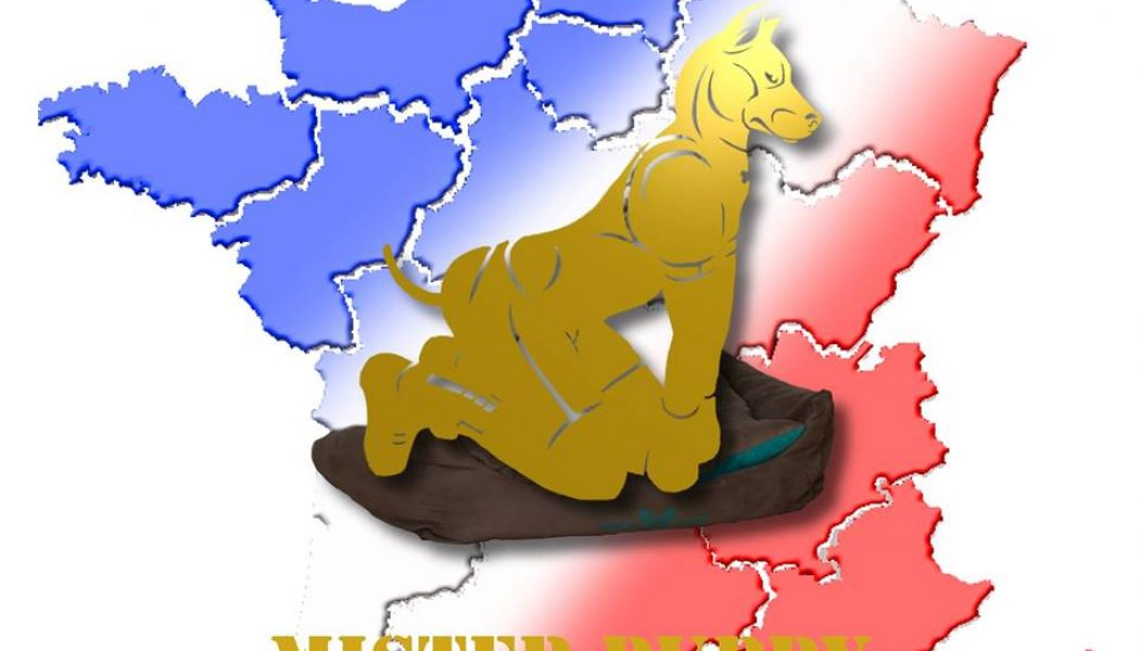 Election Mister Puppy France 2019