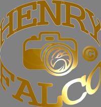 Henry Falco