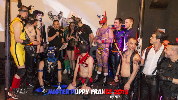Photos : Mister Puppy France 2019 by Nilo