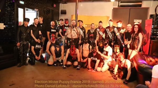 Photos : Mister Puppy France 2019 By Daniel Lefoto