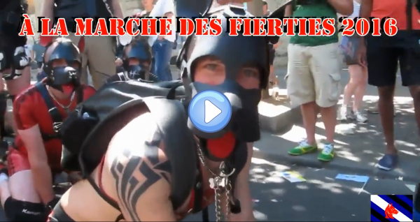 Vidéo : Teaser gaydogtraining gaypride 2016