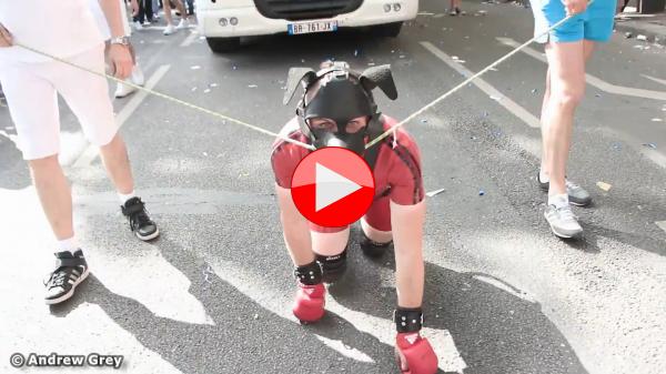 Vidéo : Un dog a la corde