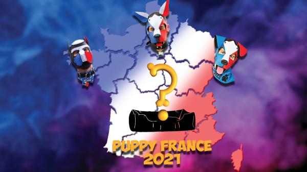 Article : Nouvelle affiche Election Puppy France 2021