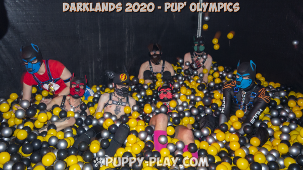 Photos : Darklands 2020 – Sunday – Pup' Olympics