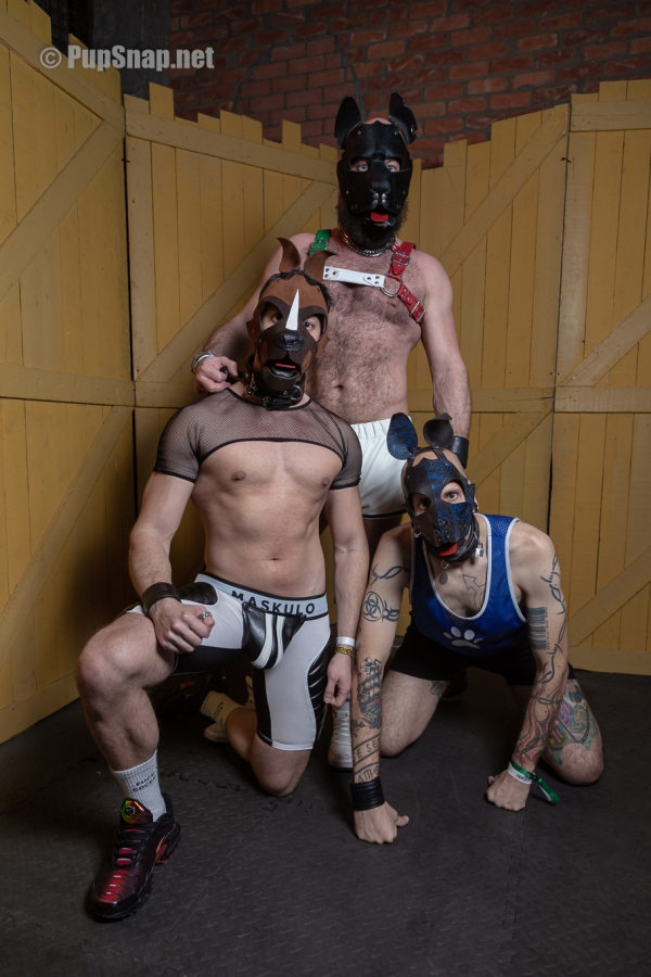 Photos : Darkland 2020 – Pup'Olympics – Shooting PupSnap.net
