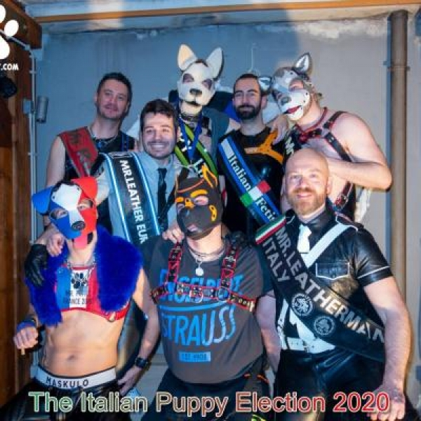 Interview : Puppy Italy 2020 – Igor – English