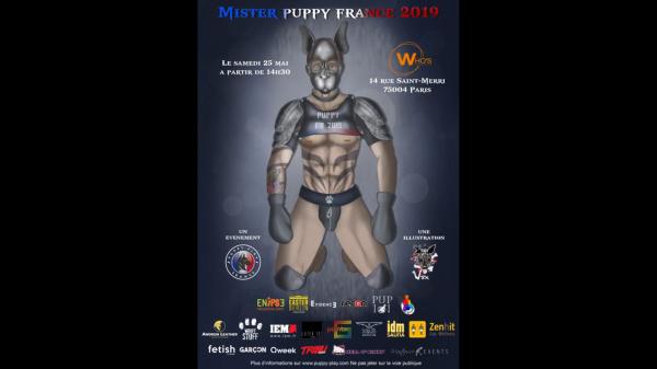 Vidéo : Affiche Mister Puppy France 2019