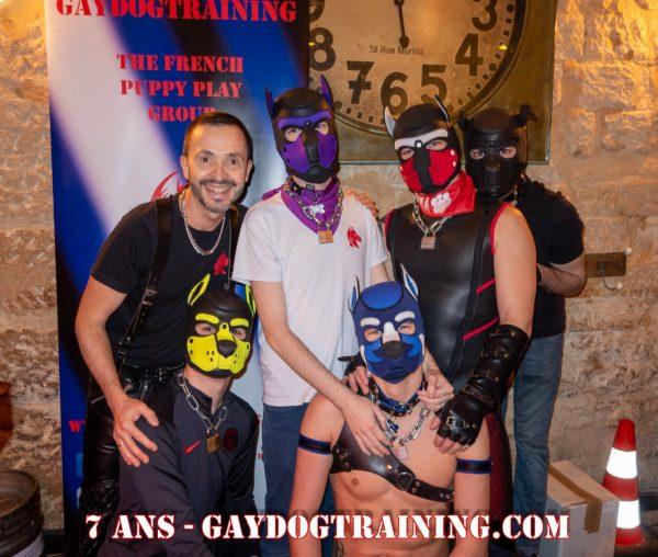 Photos : Gaydogtraining – 7ème Anniversaire