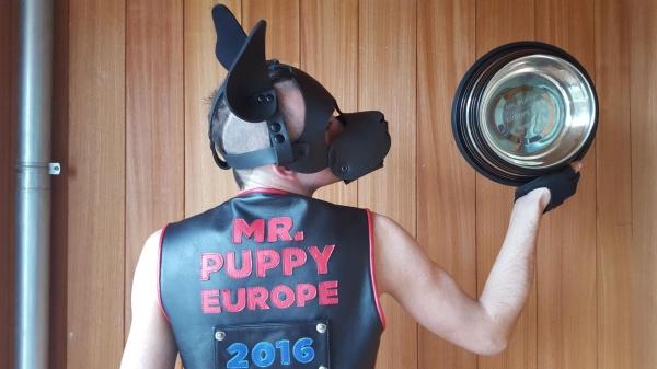 Interview : Mr. Puppy Europe 2016 – Bjoyd