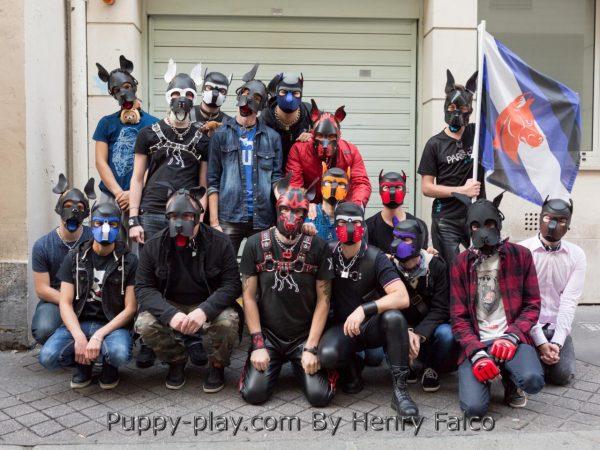 Photos : Apèro Puppies & Handlers
