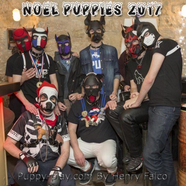 Photos : Apéro Noël Puppies & Handlers 2017