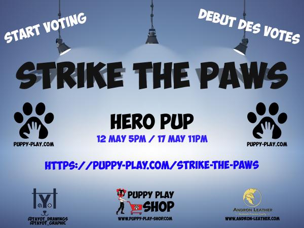 Contest : Hero Pup
